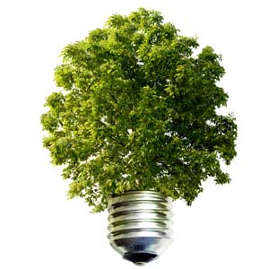 environment-friendly-renewable-energy